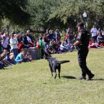 9th Annual Pasco Kids First Family Fun Day